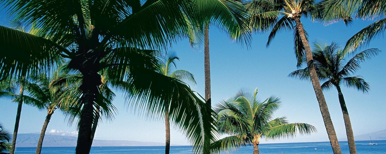 Hawaii-190220